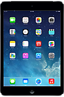 Apple iPad mini 16GB Black Picture