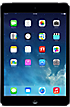 Apple iPad mini 16GB in Black  Slate