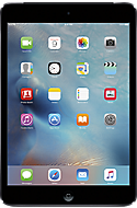 Apple® iPad® mini 16GB in Space Gray