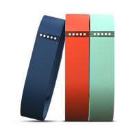 Fitbit Flex Accessory 3-Pack Small