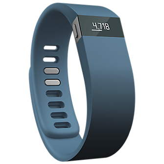 Fitbit Force Wireless Activity & Sleep Wristband - Slate/ Large - Gray