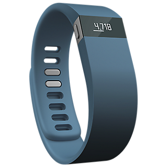 Fitbit Force Wireless Activity  Sleep Wristband - Slate/Small