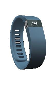 Fitbit Force Wireless Activity & Sleep Wristband - Slate/Small